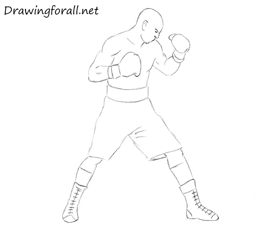 how to draw a boxer step by step how to draw a cartoon boxer dog to by boxer a step how step draw