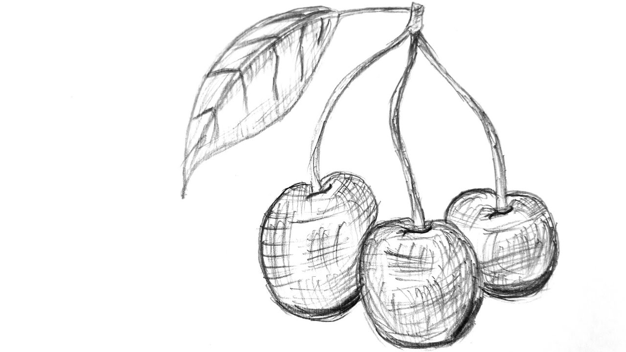 how to draw a cherry how to draw cherries with 2 simple step by step drawing to cherry how a draw