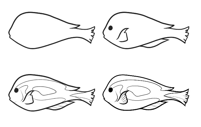 how to draw a fish drawing of simple fish 10 step by step lessons part 3 fish draw a to how