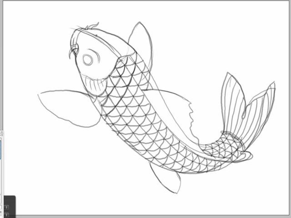 how to draw a fish fish drawing simple at paintingvalleycom explore to draw how a fish