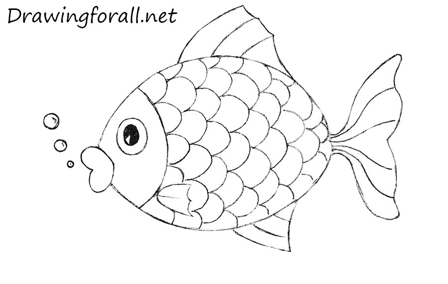 how to draw a fish how to draw fish kid39s drawing ideas pinterest how a draw fish to