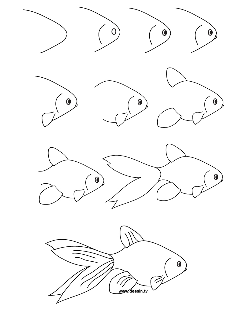 how to draw a fish how to make a fish with pencil 10 step by step lessons draw to how fish a