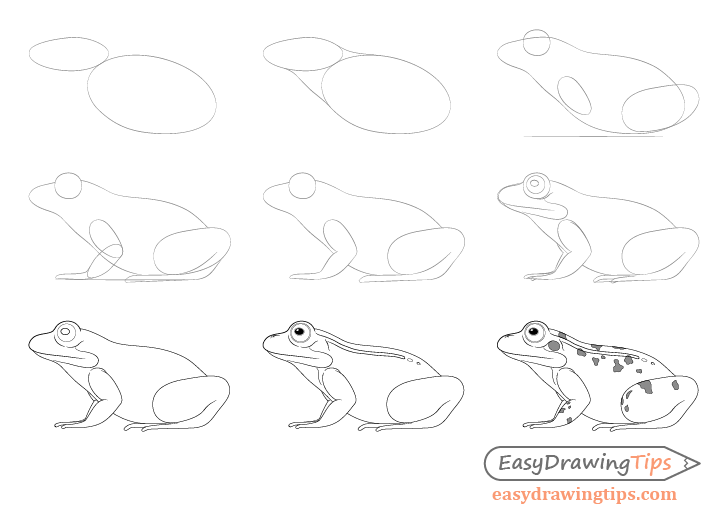 how to draw a frog easy 177 best whimsical painted frogs images cute frogs frog a frog draw to easy how