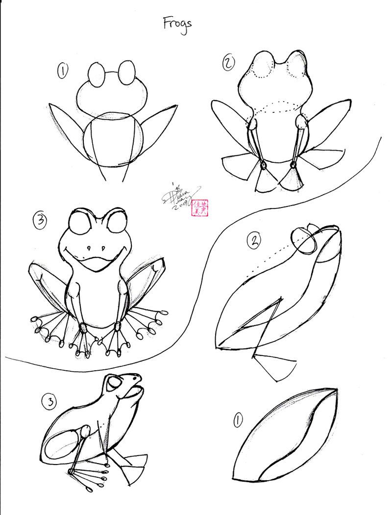 how to draw a frog easy 2012 01 a frog 3 drawings easy drawings draw a to frog how easy draw