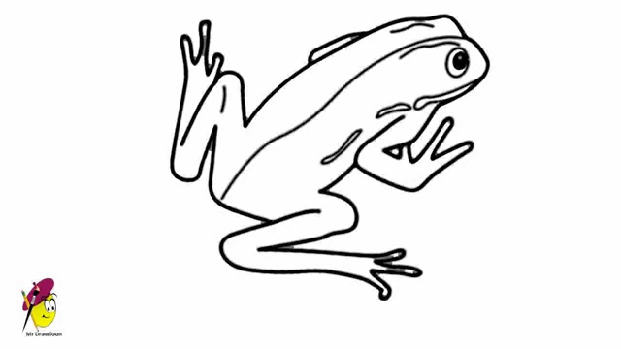 how to draw a frog easy how to draw a frog easy for beginners draw to easy frog how a