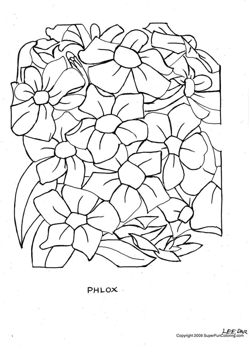 how to draw a goldenrod flower goldenrod flower drawing free download on clipartmag goldenrod a how flower to draw