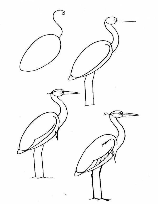 how to draw a heron draw a heron drawing for kids sketches tutorial heron draw to how a