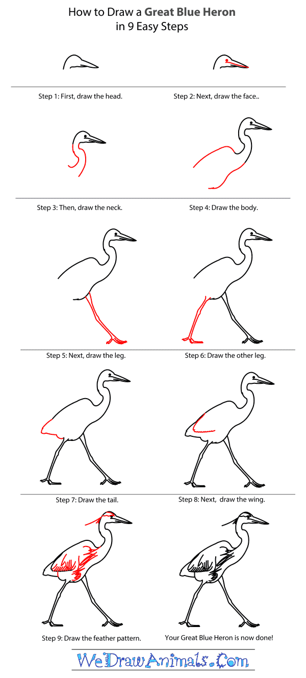 how to draw a heron heron great blue drawing lesson how a heron draw to