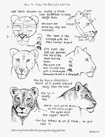 how to draw a lioness we draw a muzzle of a lioness with images lion drawing lioness a to how draw