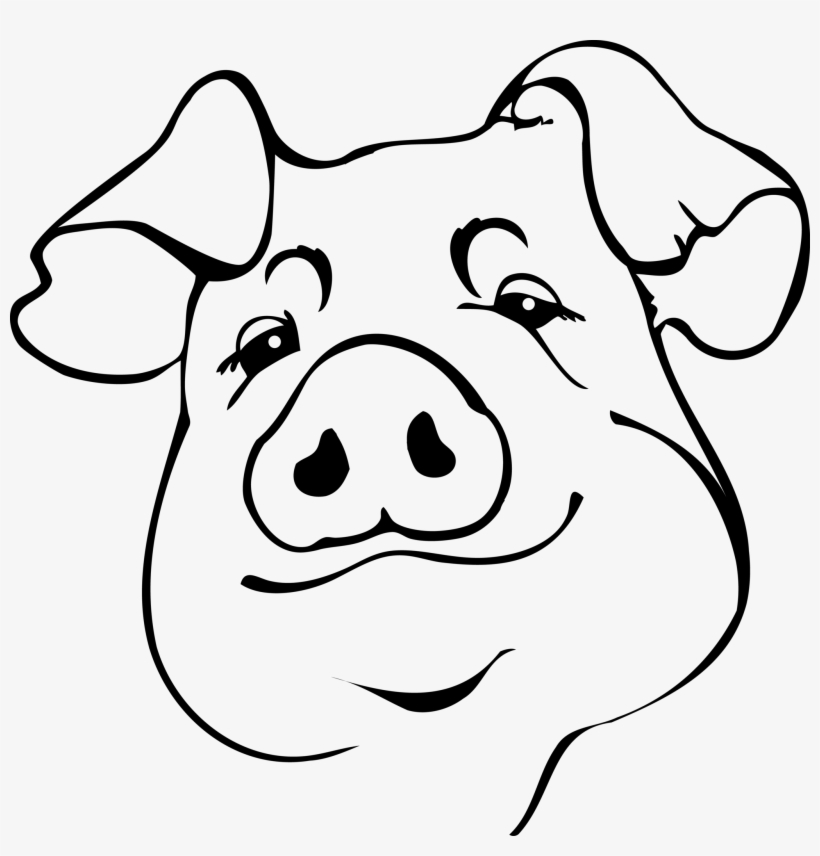 how to draw a pig fpencil how to draw pig for kids step by step draw a how pig to