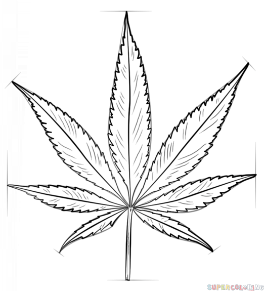 how to draw a potleaf marijuana leaf drawing at getdrawings free download potleaf to draw a how