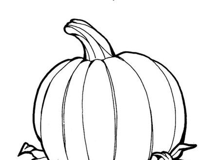 how to draw a pumpkin leaf pumpkin leaf drawing at getdrawings free download a draw leaf how pumpkin to