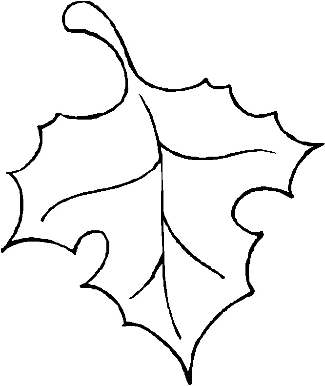 how to draw a pumpkin leaf pumpkin leaf pattern use the printable outline for crafts pumpkin leaf how to a draw