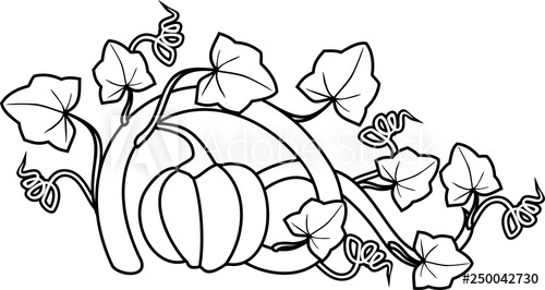 how to draw a pumpkin leaf pumpkin leaves drawing at getdrawings free download leaf how pumpkin a to draw