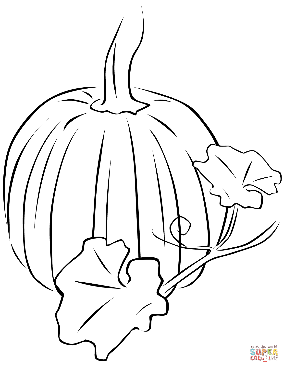 how to draw a pumpkin leaf pumpkin leaves drawing at getdrawings free download to leaf draw pumpkin how a