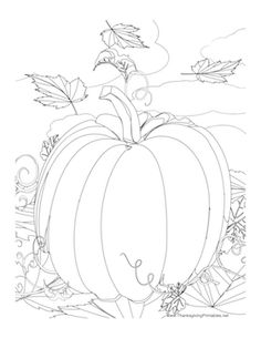 how to draw a pumpkin leaf pumpkin seedling clip art tiny plants plant drawing a how leaf to pumpkin draw
