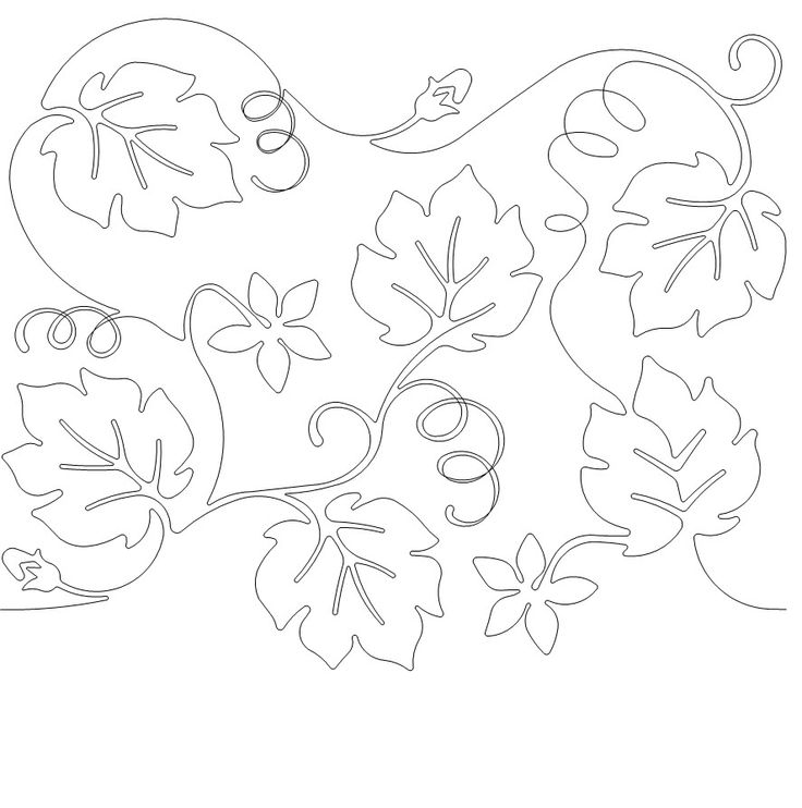 how to draw a pumpkin leaf pumpkin vine drawing free download on clipartmag leaf how to a draw pumpkin