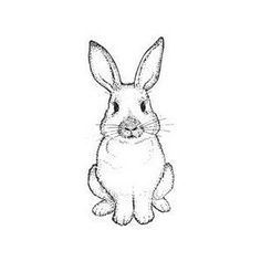 how to draw a rabbit face bunny rabbit instant download diy iron on transfer art draw a rabbit face to how