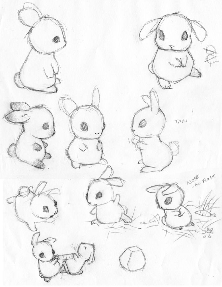 how to draw a rabbit face draw tutorial bunny cerca con google bunny images a to face how draw rabbit