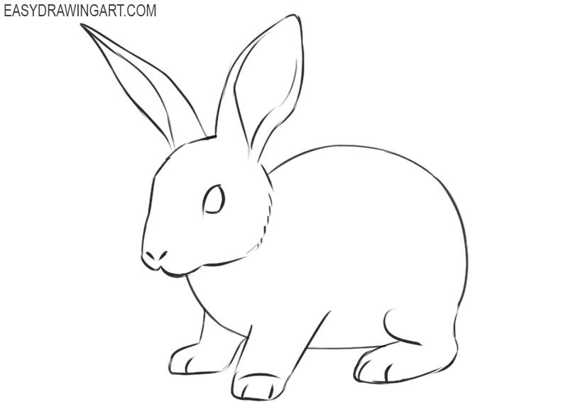 how to draw a rabbit face simple bunny face drawing at getdrawings free download to face how rabbit draw a