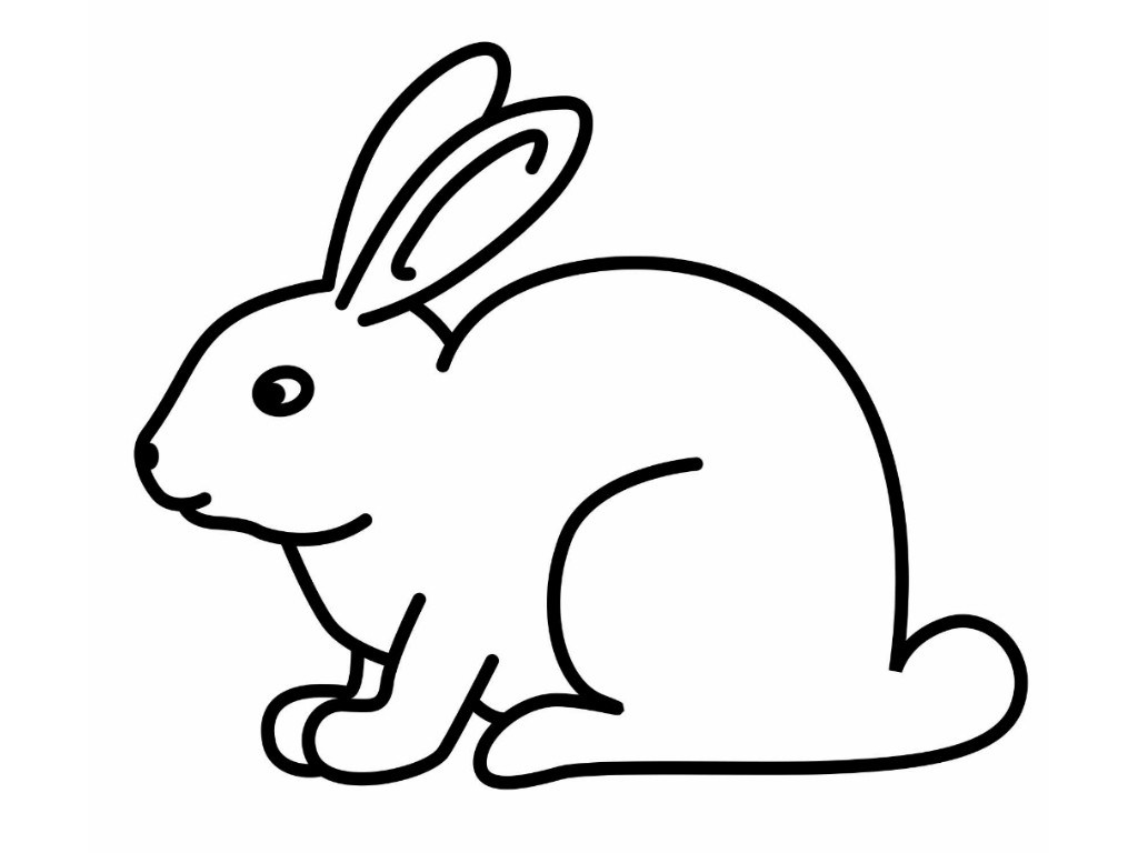 how to draw a rabbit face simple bunny face drawing free download on clipartmag face rabbit to a draw how