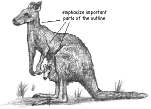 how to draw a realistic kangaroo how to draw the kangaroos drawing tutorials drawing kangaroo how a draw to realistic