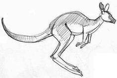 how to draw a realistic kangaroo realistic coloring pages of kangaroo malvorlagen tiere to a draw how kangaroo realistic