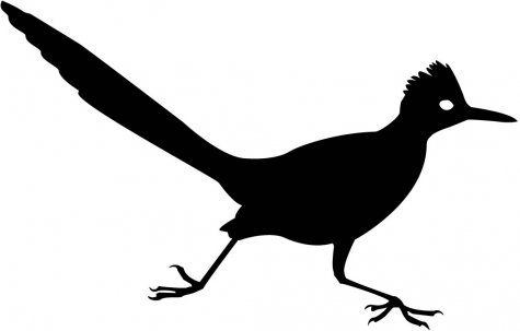 how to draw a roadrunner about mac and geo roadrunner a draw how to
