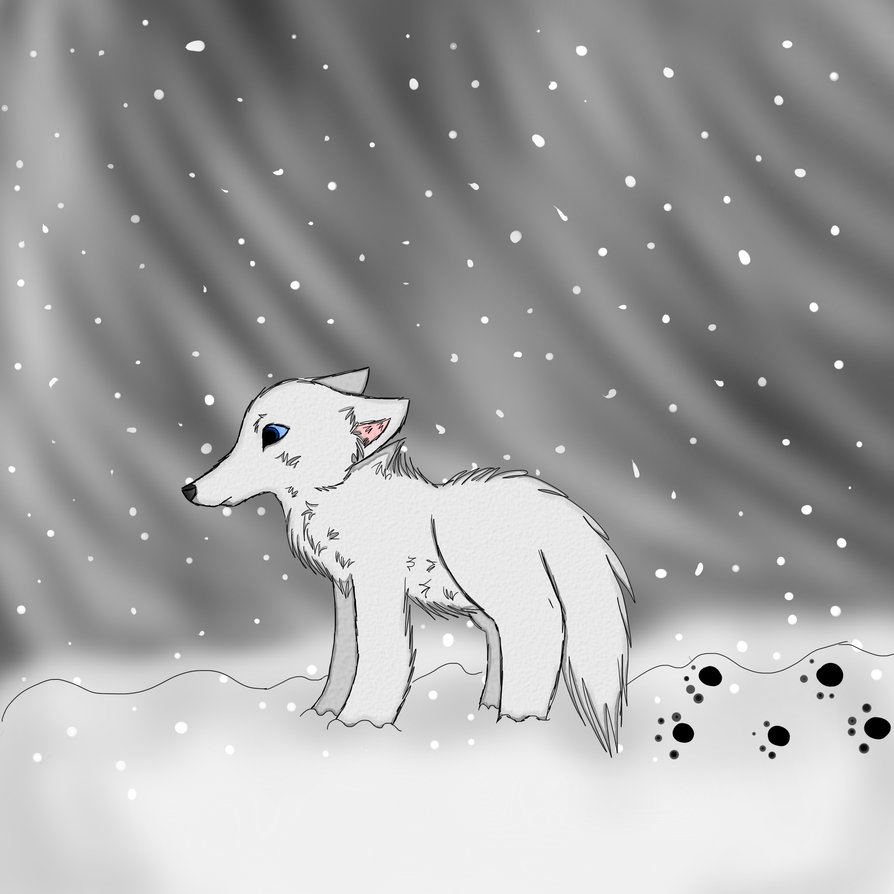 How to draw a snow wolf