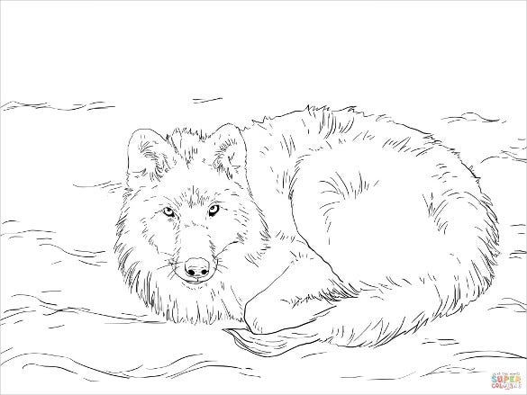 how to draw a snow wolf 32 wolf drawings pdf jpeg free premium templates wolf snow to draw a how