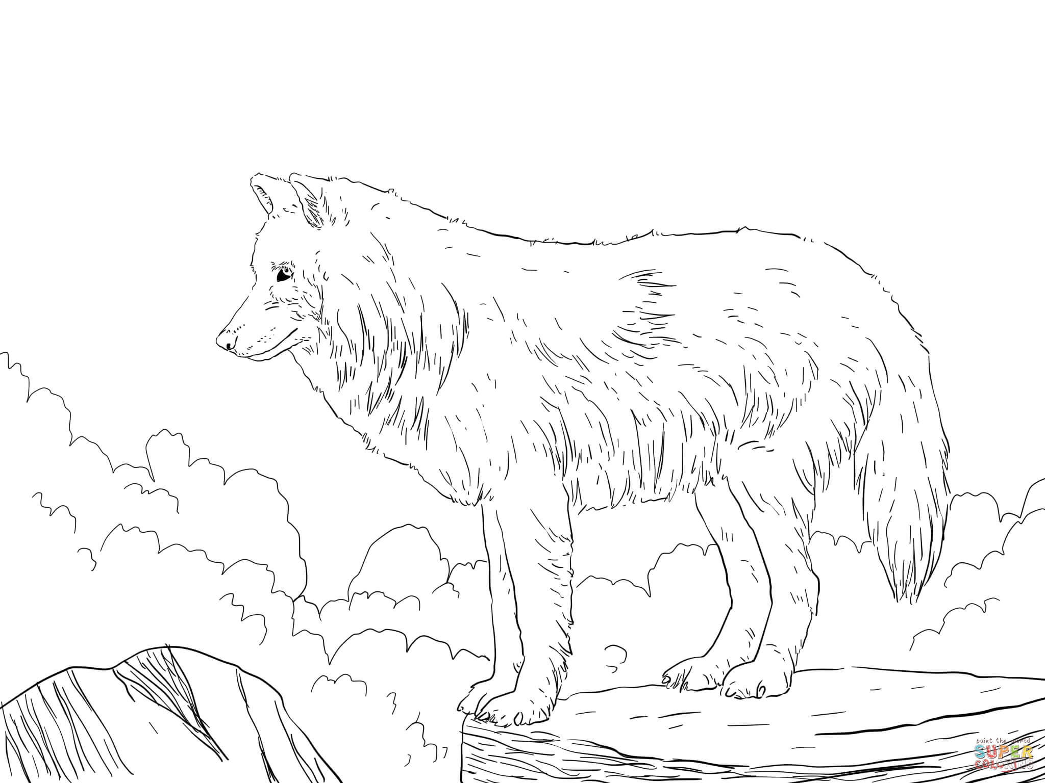 how to draw a snow wolf arctic snow wolf coloring page free printable coloring pages to a snow draw how wolf