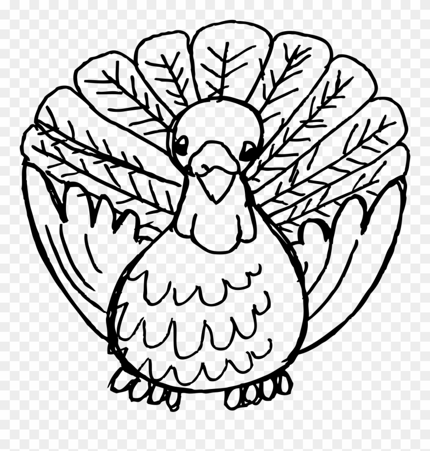 how to draw a turkey library of turkey drawings graphic free library png files how to turkey a draw