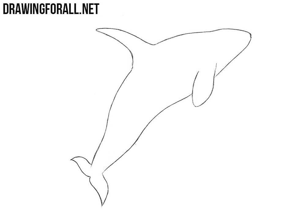 how to draw a whale step by step how to draw a whale step by step arcmelcom whale draw a to how step step by