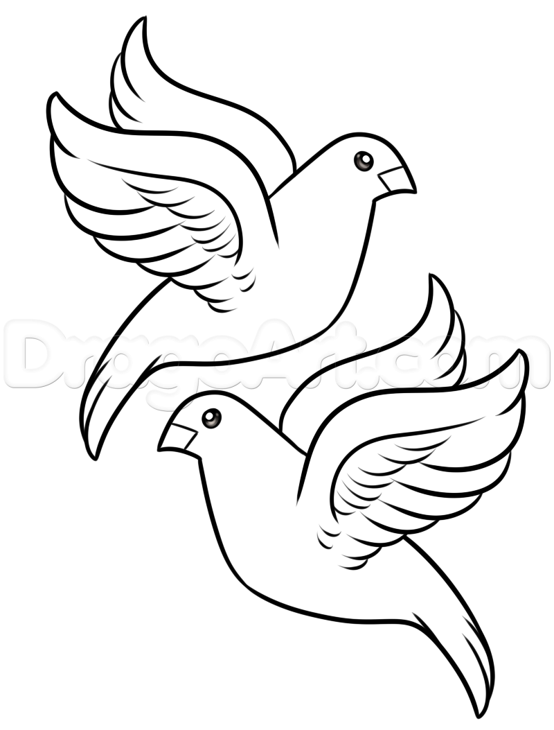 how to draw an easy dove dove clipart simple 20 free cliparts download images on to easy how an draw dove