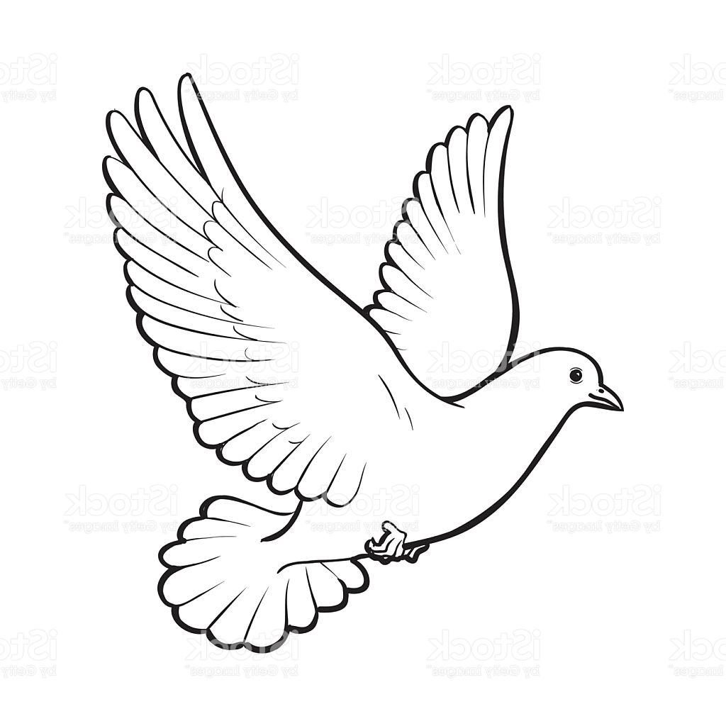 how to draw an easy dove dove drawing at getdrawings free download dove an how easy to draw