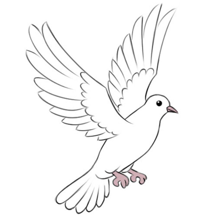 how to draw an easy dove dove how to draw a dove easy drawing youtube how draw to an easy dove
