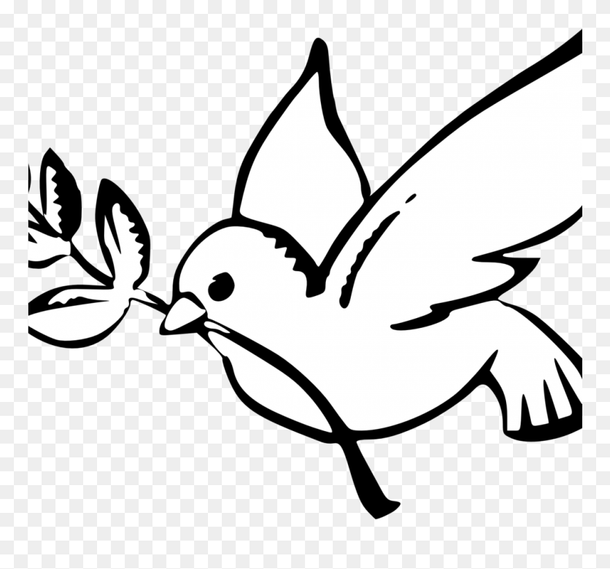 how to draw an easy dove draw a dove easy clipart 4231572 pinclipart easy dove how draw to an