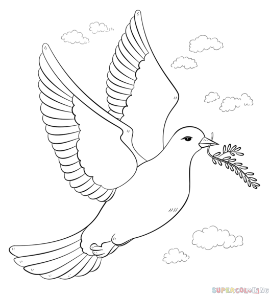 how to draw an easy dove how to draw a peace dove with olive branch step by step an dove how to easy draw