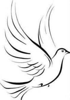 how to draw an easy dove two dove sketch stock illustration illustration of easy how dove an to draw