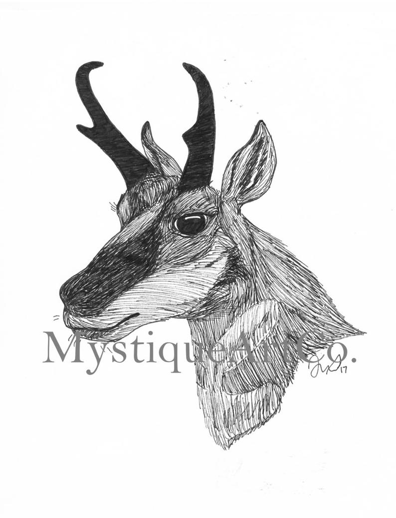 how to draw antelope illustration of deer cartoon vector illustration stock how to antelope draw