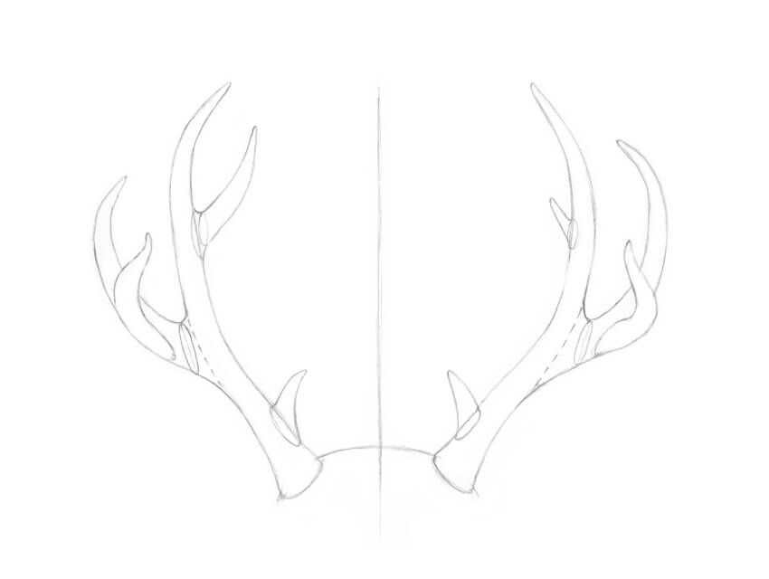 how to draw deer antlers deer with antlers drawing free download on clipartmag draw antlers how deer to