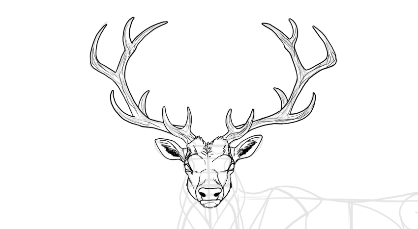 how to draw deer antlers free png antler cutout by mauvevrexel drawing deer how draw to antlers