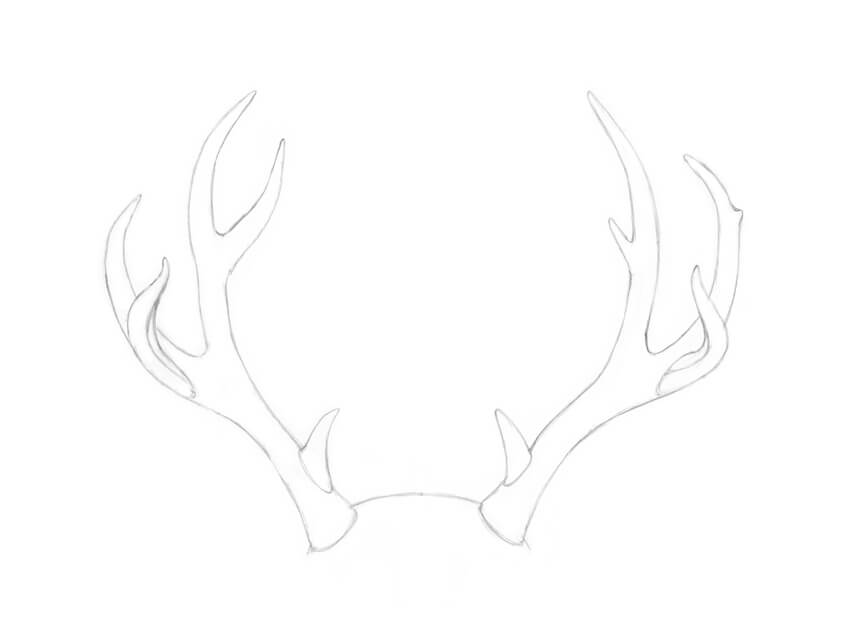how to draw deer antlers how to draw antlers step by step in 2020 antler drawing draw antlers deer how to