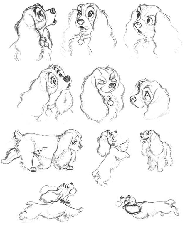 how to draw disney animals 25 best images about things to draw on pinterest disney to draw disney how animals