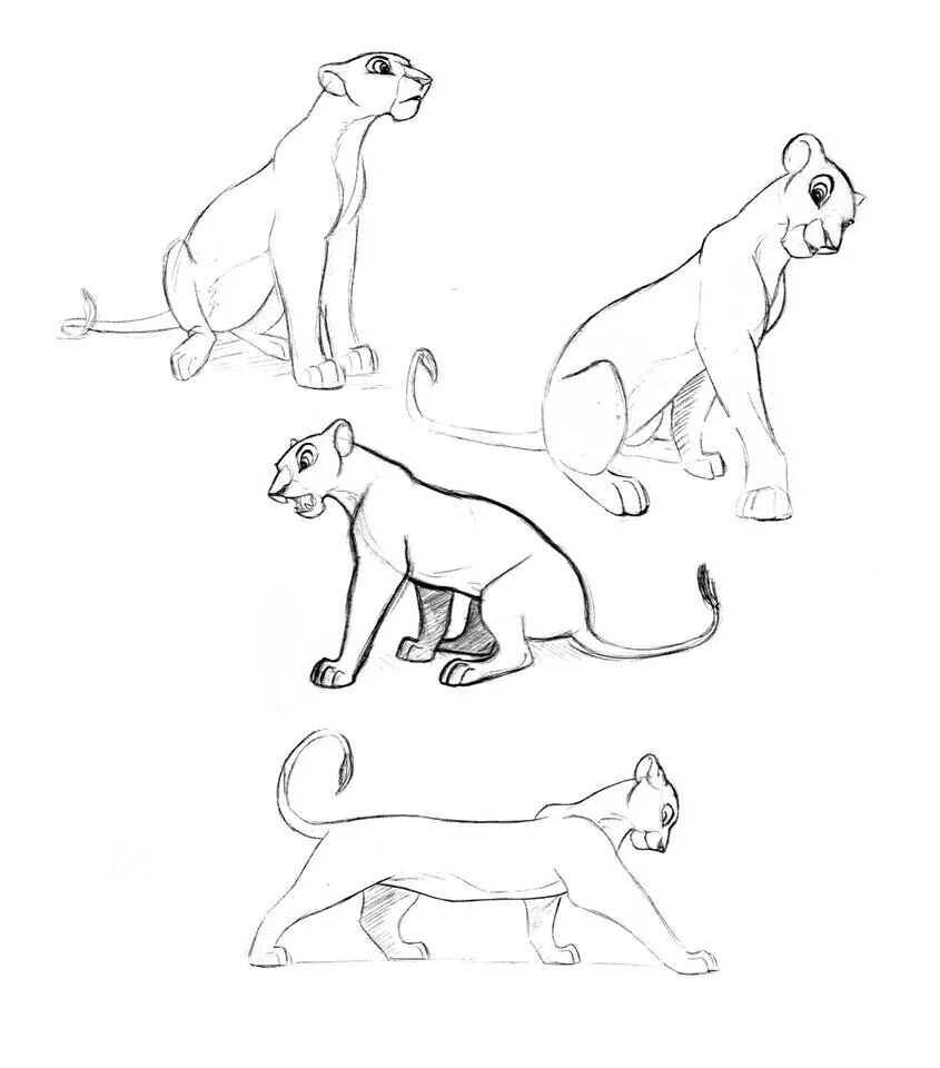 how to draw disney animals i want to try drawing this looks fairly easy and cute animals draw to disney how