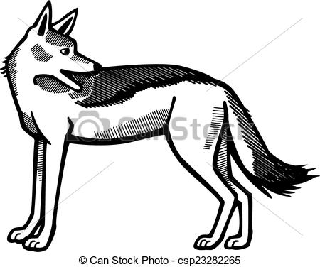 how to draw jackal download jackal clipart for free designlooter 2019 to draw jackal how