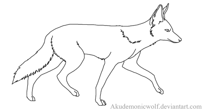how to draw jackal how to draw a jackal jackal to draw how