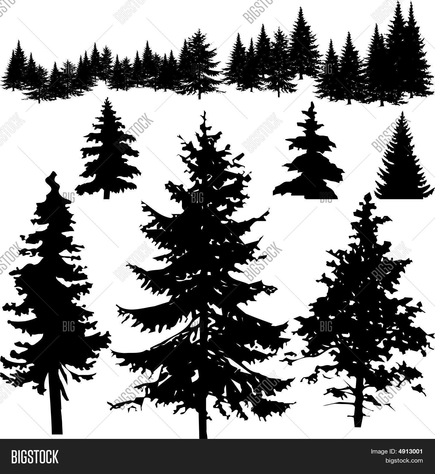 how to draw pine trees 5 pine tree silhouette drawing png transparent onlygfxcom how draw trees pine to