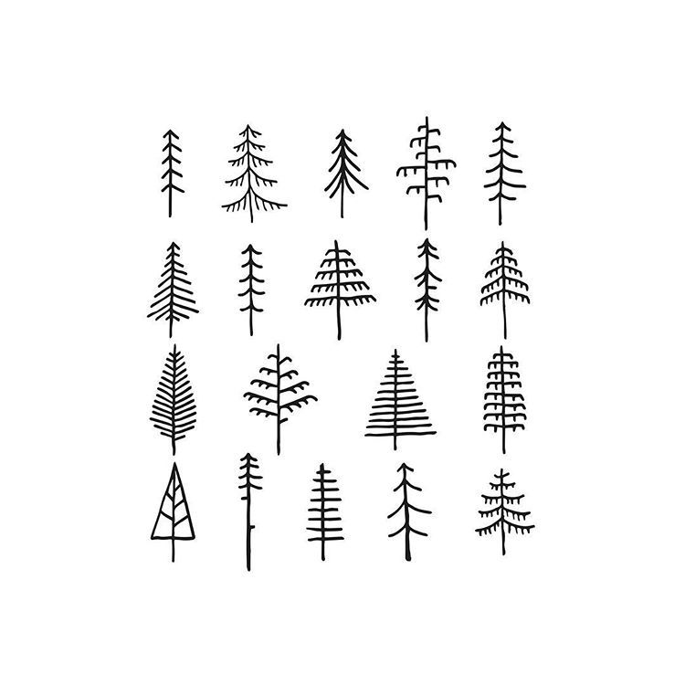 how to draw pine trees pencil drawings of pine trees bing images tree trees pine how draw to
