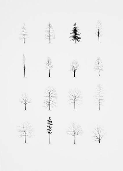 how to draw pine trees step by step how to draw a pine tree step by step drawing tutorials how to draw trees step step pine by